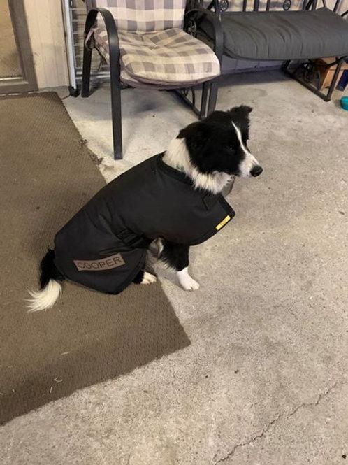 Oil Skin Dog Coat (Medium - 51cm to 65cm)
