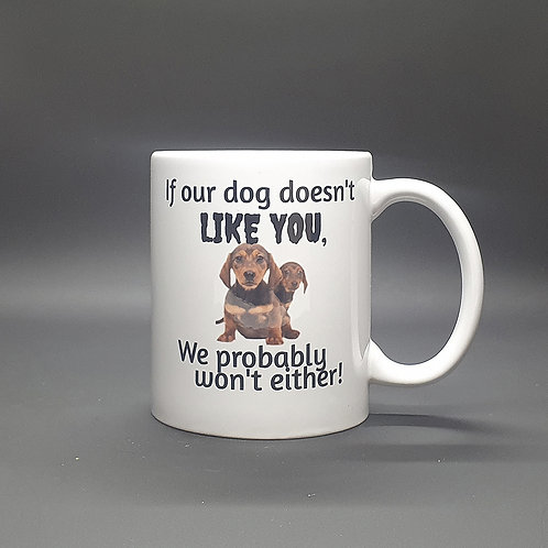 If Our Dog Doesn't Like You...