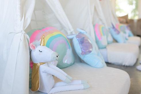 Unicorn Theme Picture(closeup).jpg