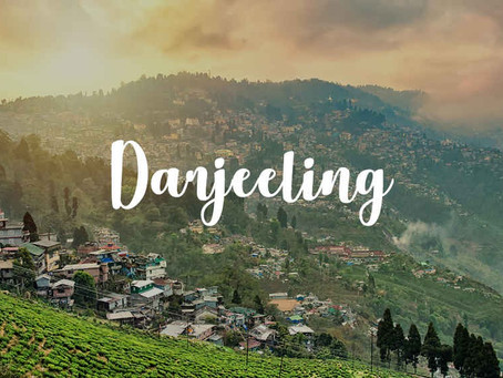 Top Attractions in Darjeeling