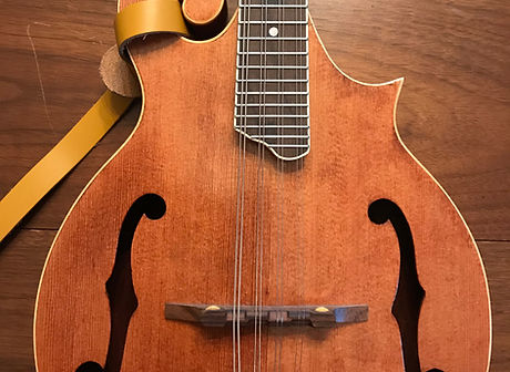 Mandolin with f-holes against wood backg