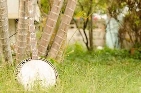 An old banjo rests on a piece of green o