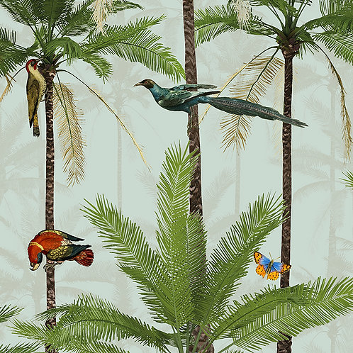 CRAZY PALMS | Tropical Birds