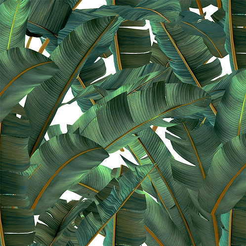 Tropical Jungle Leaf Jamaica