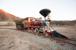 Custom Locomotive