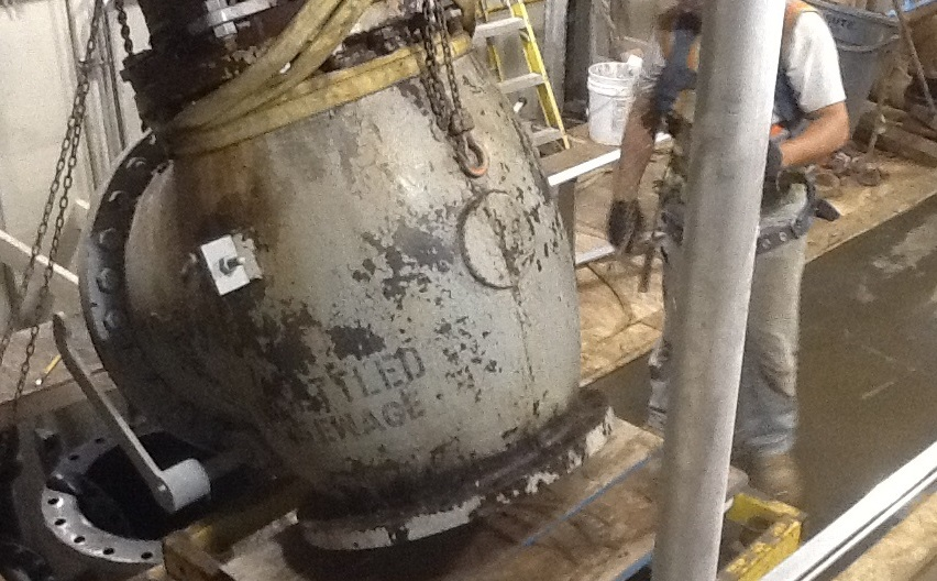 Check valve replacement and repair