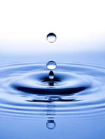 Protection des ressources hydriques en Wallonie