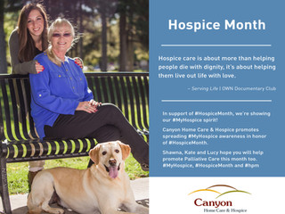 Promote Palliative Care during November for Hospice month.