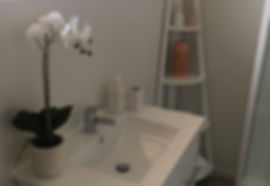 Hamilton house staging home staging full partial staging book nz