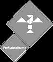 profissionalizante_edited.png