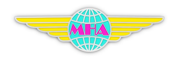 MHA Wings - Enhanced - Cropped.png