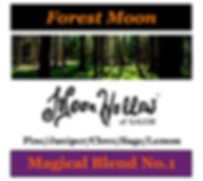 Forest Moon - NEW 2.png