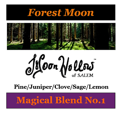 Blend No.1: 4oz. 'Forest Moon' Magical Essential Oil Spray