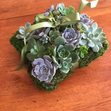 Succulent Ringbearer's Pillow