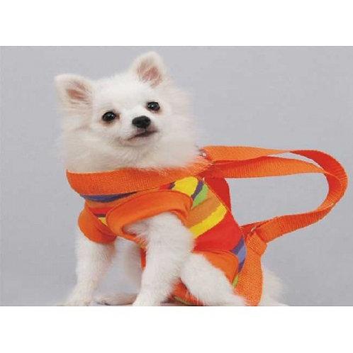 Orange Rainbow Dog Carrier