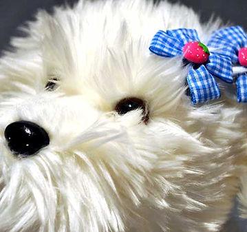 Dog Hair Clips & Bows