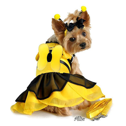 Bumble Bee Fairy Dog Costume