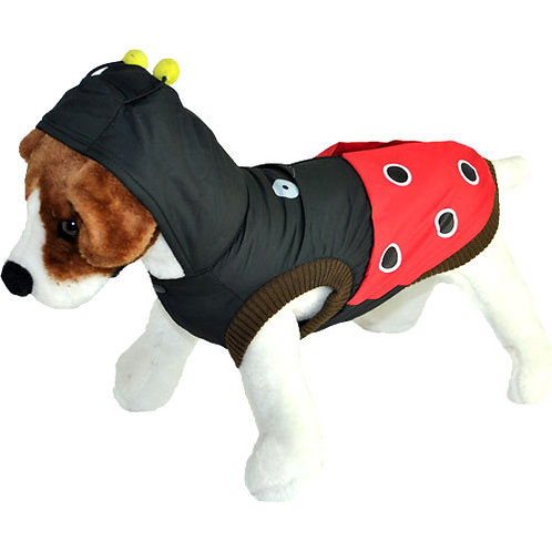 Lady Beetle Hooded Jacket
