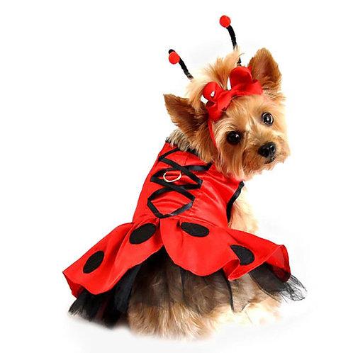 Lady Bug Fairy Dog Costume