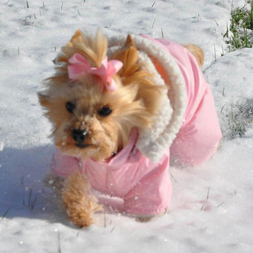 Pink 'Ruffin It' Dog Snowsuit