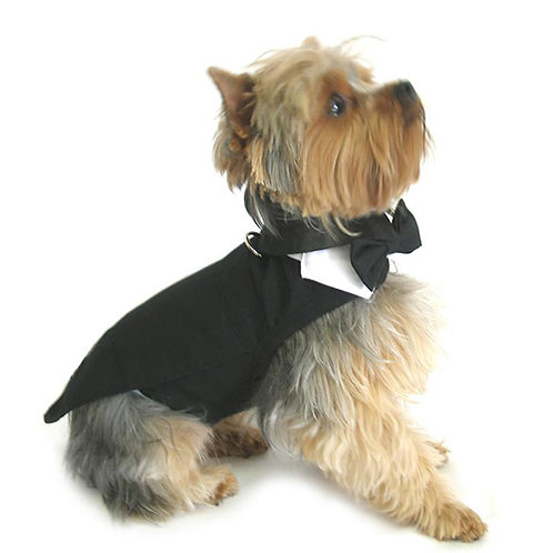 Tuxedo, Tails, Bow Tie Collar and Top Hat
