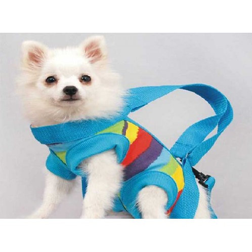 Blue Rainbow Dog Carrier