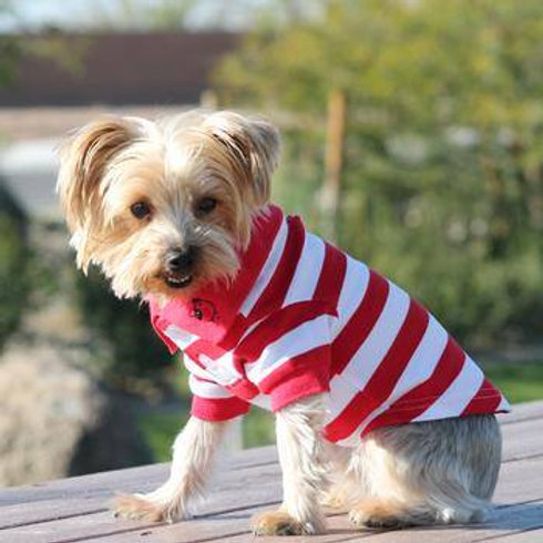 Striped Dog Polo Flame Scarlet Red & White