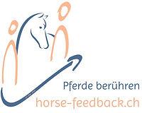 horse feedback giedemann.jpg
