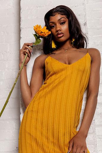 Shaded Sunflower