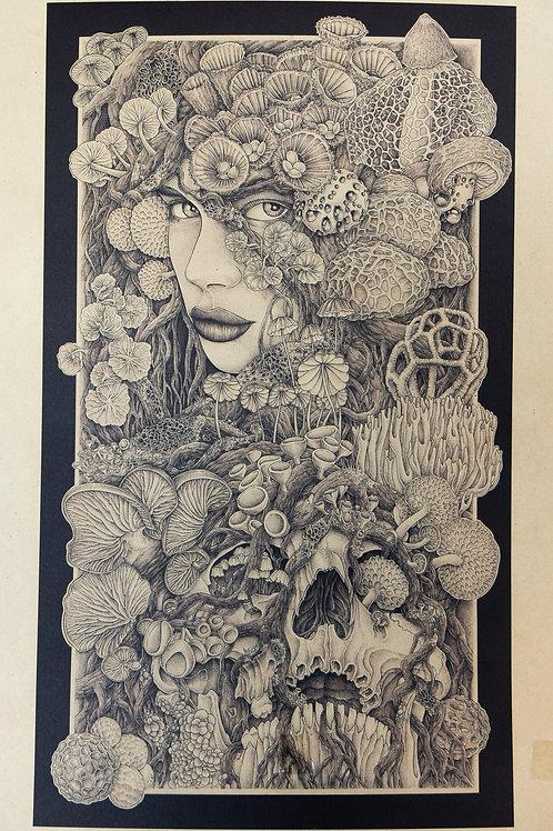 """Andréa Baiardo """"Roots"""""""