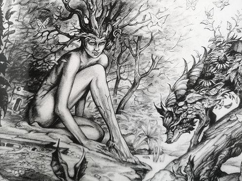 """Séverine Pineaux """"La forêt"""""""