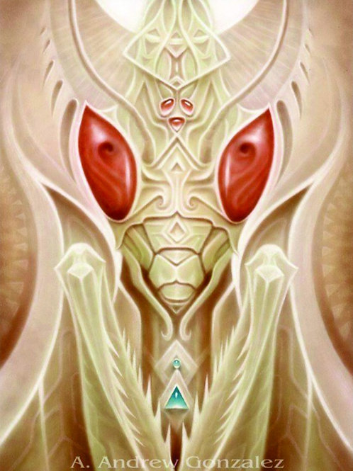 Andrew Gonzales: Insecte 1