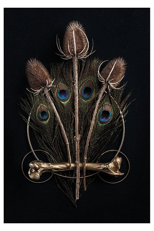 Vincent Fouquet - Trinity