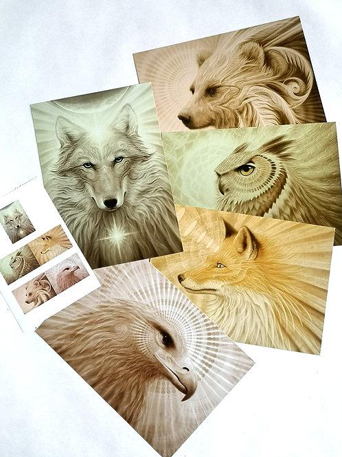 """A.Andrew Gonzalez """"animaux"""" Lot de 5 cartes"""