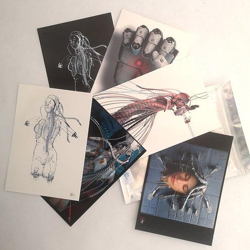Yann Minh pack 6 cartes