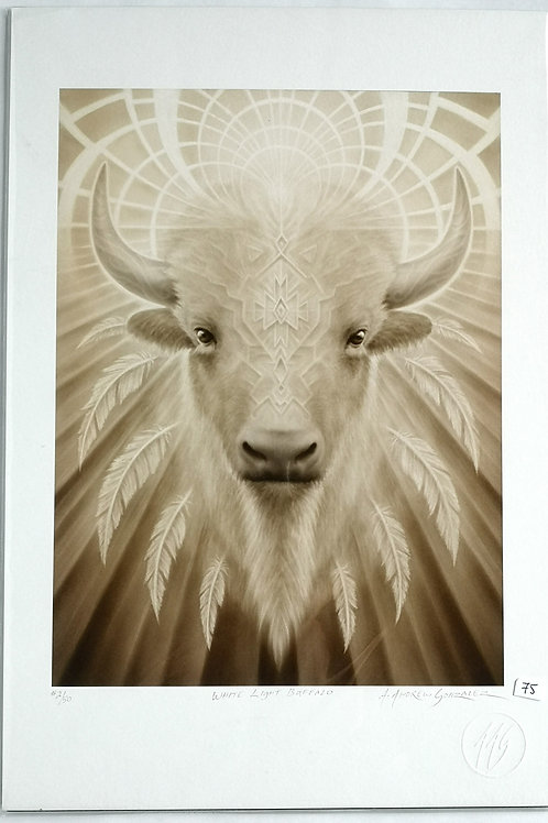 "A.Andrew Gonzalez ""White light buffalo"""