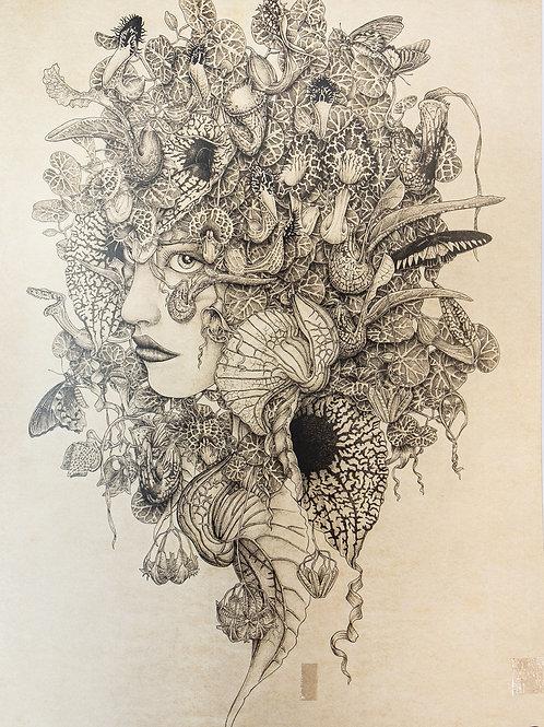 "Andréa Baiardo ""Grandi Flora"""