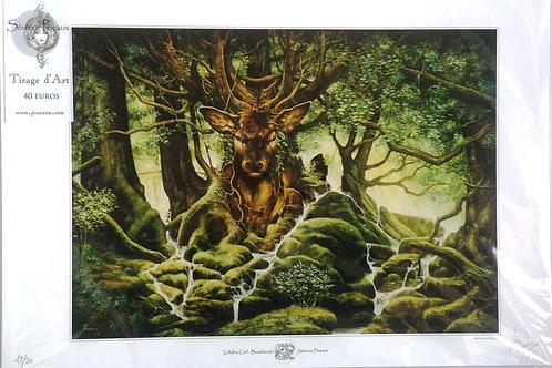 """Séverine Pineaux """"L'arbre cerf"""""""