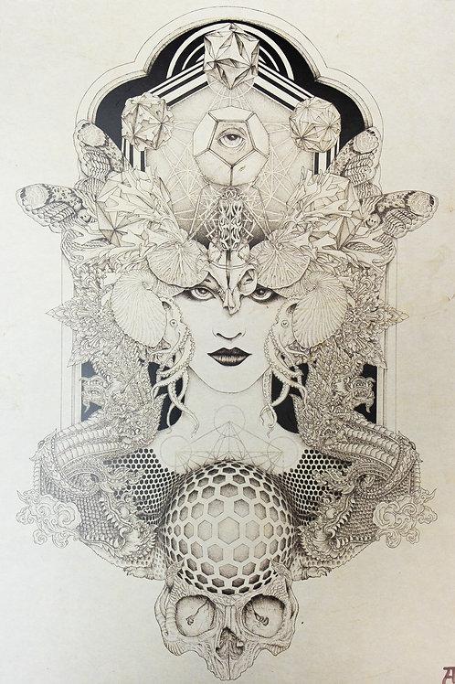"Andréa Baiardo ""Freqs of nature"""