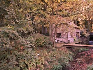 Molenhuisje van Kwabeek gekleurd door de herfst !
