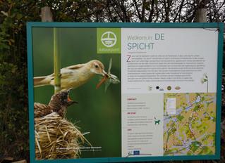 Wandelen in natuurgebied De Spicht.