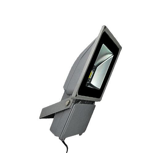 LED Flood Light Bridgelux