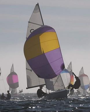 Sausalito Sailing Boats.png
