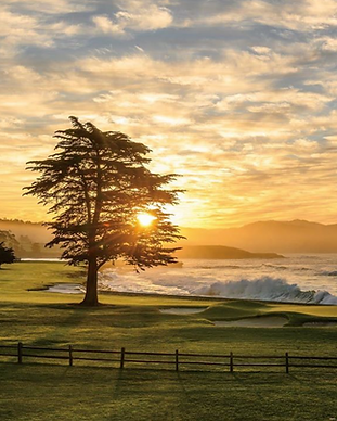 Joann Dost Image Pebble Beach.png