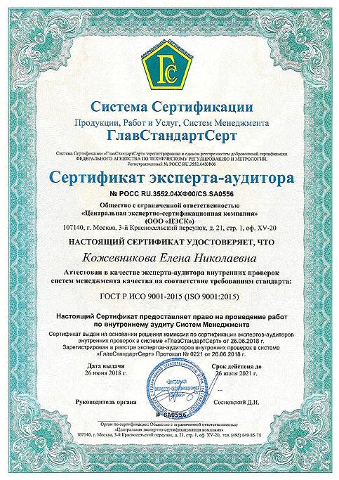 Кожевникова_ЦЭСК_2018-001.jpg