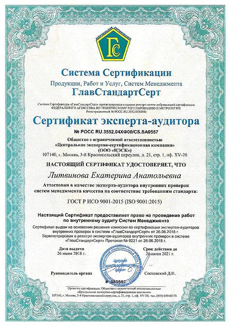 Литвинова_ЦЭСК_2018-001.jpg