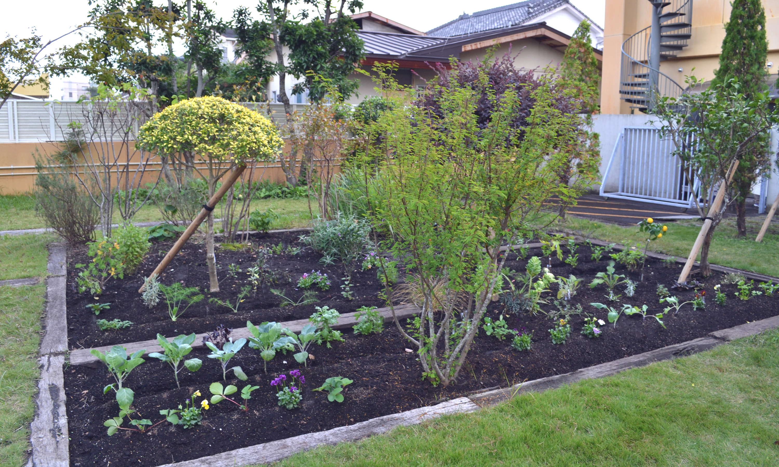 Relaxing garden for family