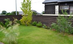 small vagetable garden