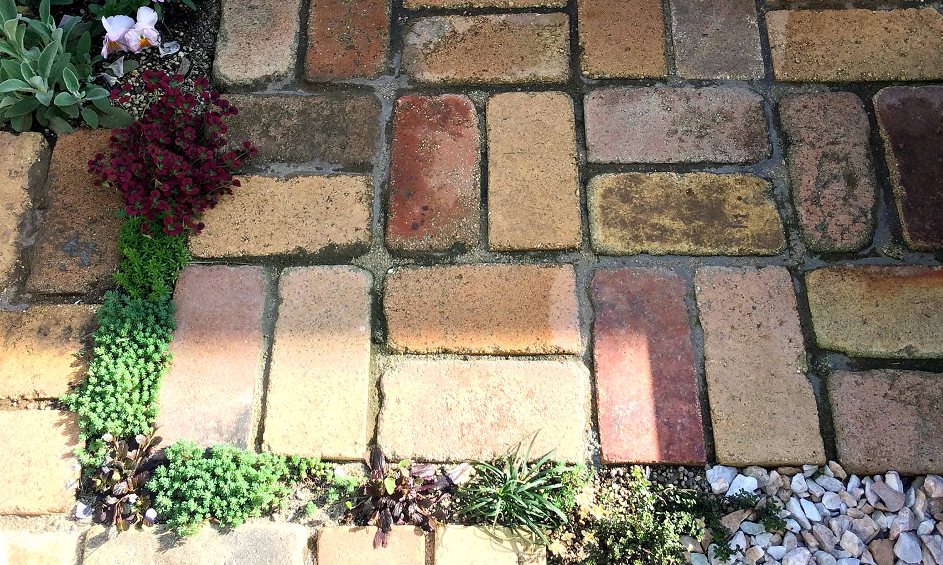 The antique bricks terrac