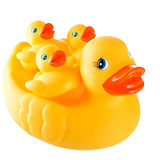 Rubber yellow duck family - mother and l